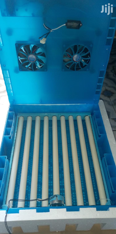 64 Eggs Incubator Ac/Dc Machine.