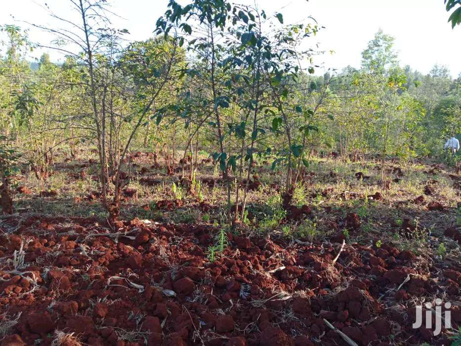 Gatanga 13acres for Sale | Land & Plots For Sale for sale in Gatanga, Murang'a, Kenya