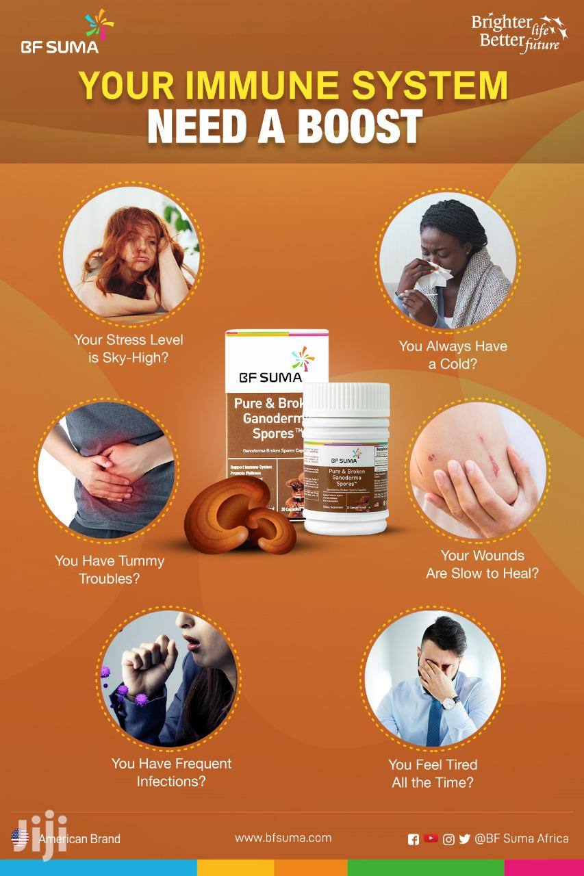 Pure & Broken Ganoderma Spores(Immune System Booster)