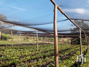 Nursery Shade Nets For Sale | Farm Machinery & Equipment for sale in Kapseret, Langas