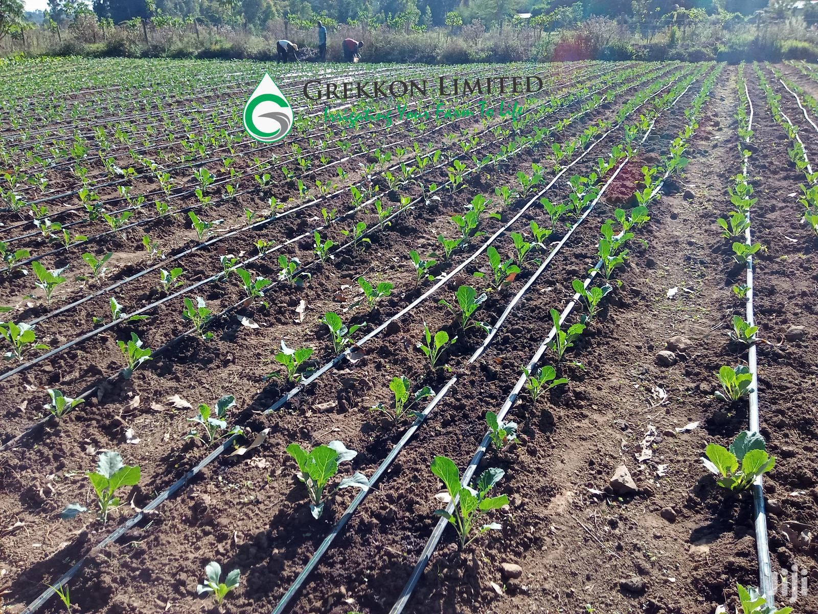 Affordable Drip Irrigation Kits For Eighth 1/8 Acre Plots/Farms