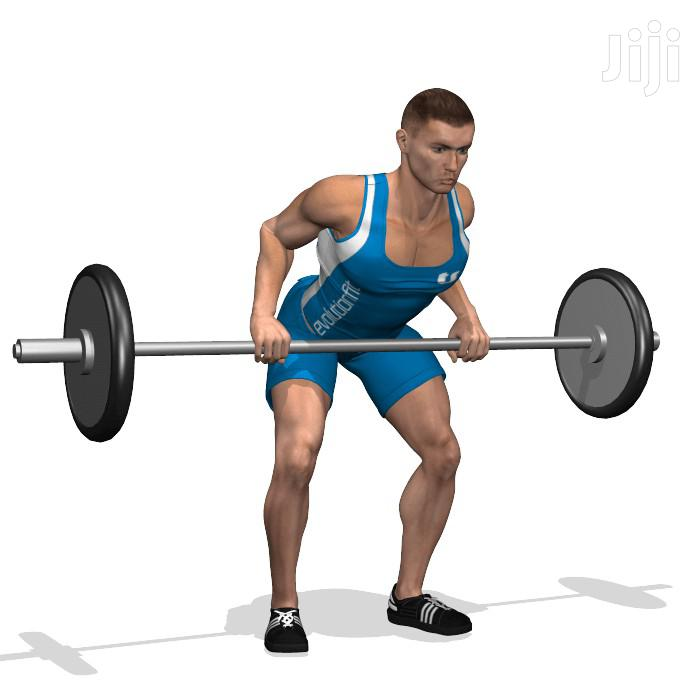 Archive: Gym Barbell Olympic Weights and Bars