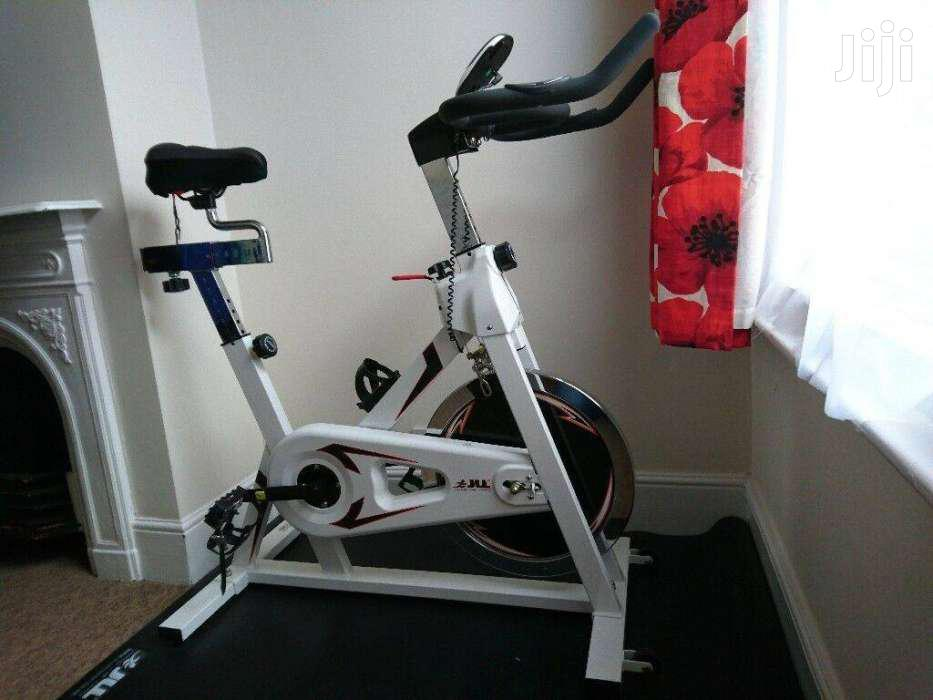 Archive: Pro Fitness Workout Machine Spin Exercise Bike