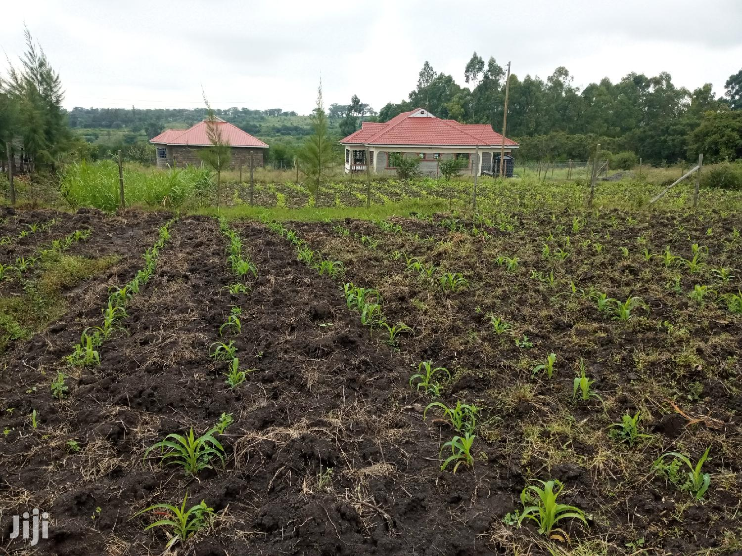 1/8 Acre for Sale in Kadisi