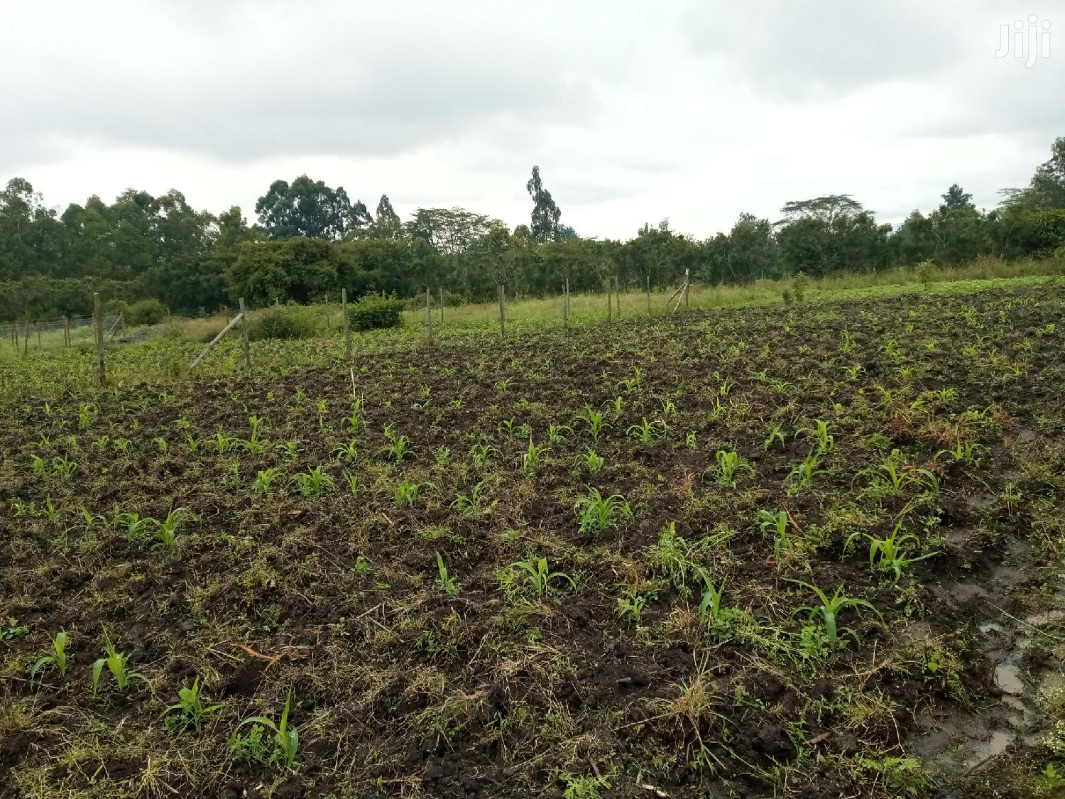1/8 Acre for Sale in Kadisi | Land & Plots For Sale for sale in Ongata Rongai, Kajiado, Kenya
