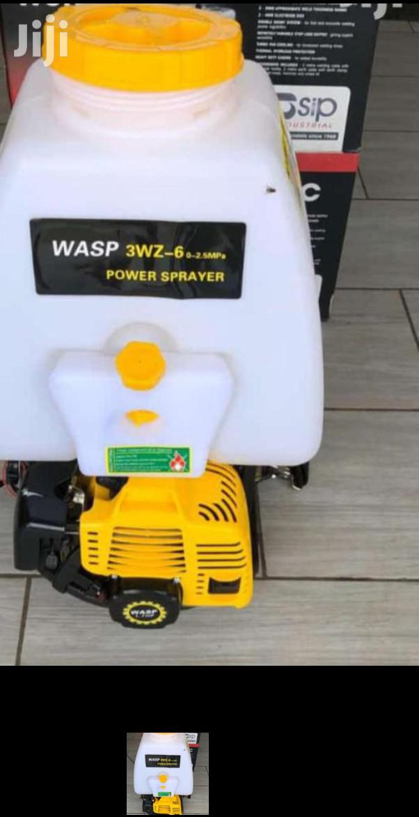 Knapsack Sprayer Petrol Powered
