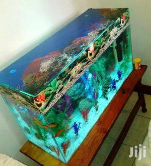 Customized Aquariums