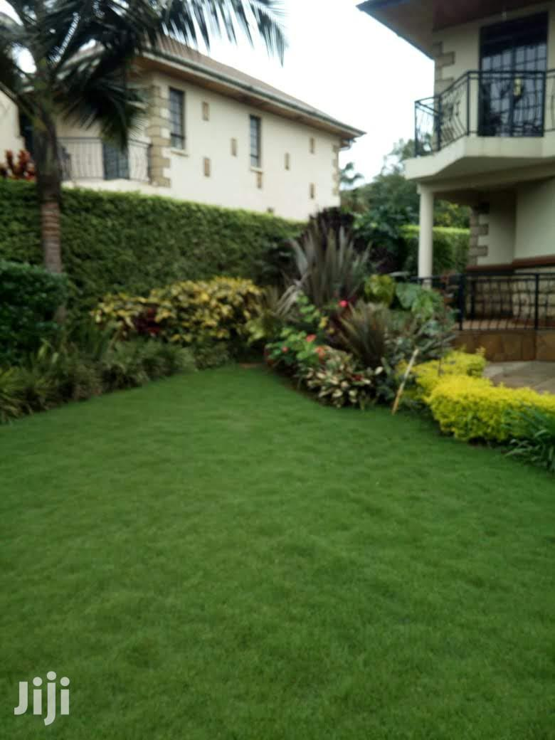 4 Bedroom Duplex/Townhouse + DSQ To Let, With Garden
