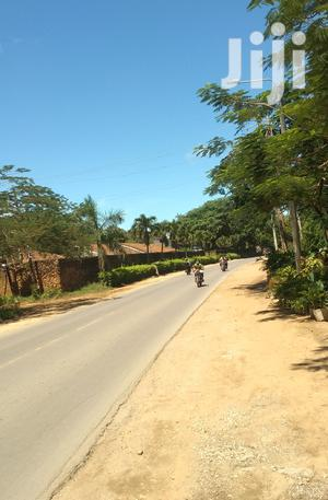 Charming 50 by 100 Plots for Sale in Malindi Town | Land & Plots For Sale for sale in Kilifi, Malindi