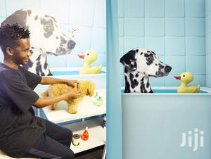Dog Grooming & Cleaning Services.Quality & Guaranteed Service.Call Now