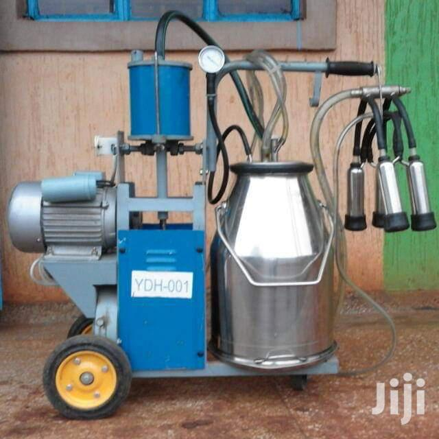 Single Bucket Milking Machine.