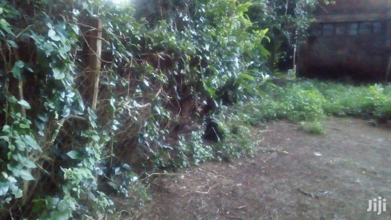 Plot Kitengela to Lease. | Land & Plots for Rent for sale in Kitengela, Kajiado, Kenya