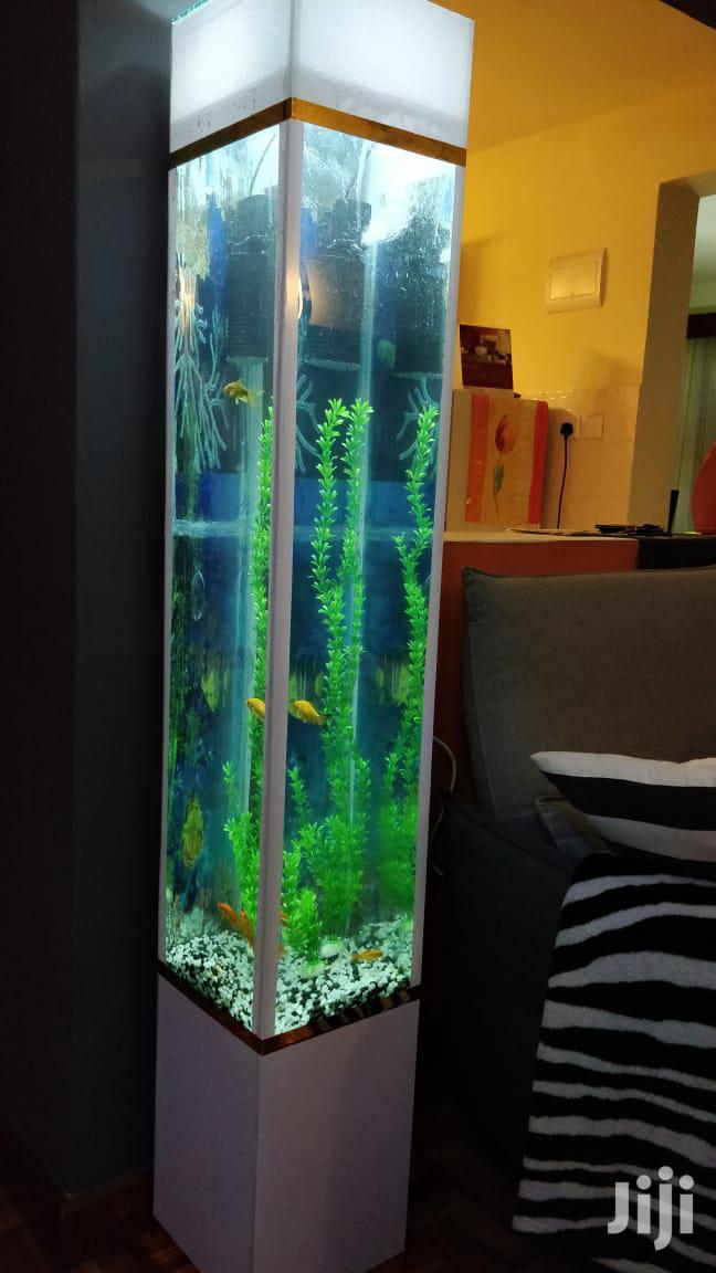 Tower Aquarium | Fish for sale in Kileleshwa, Nairobi, Kenya