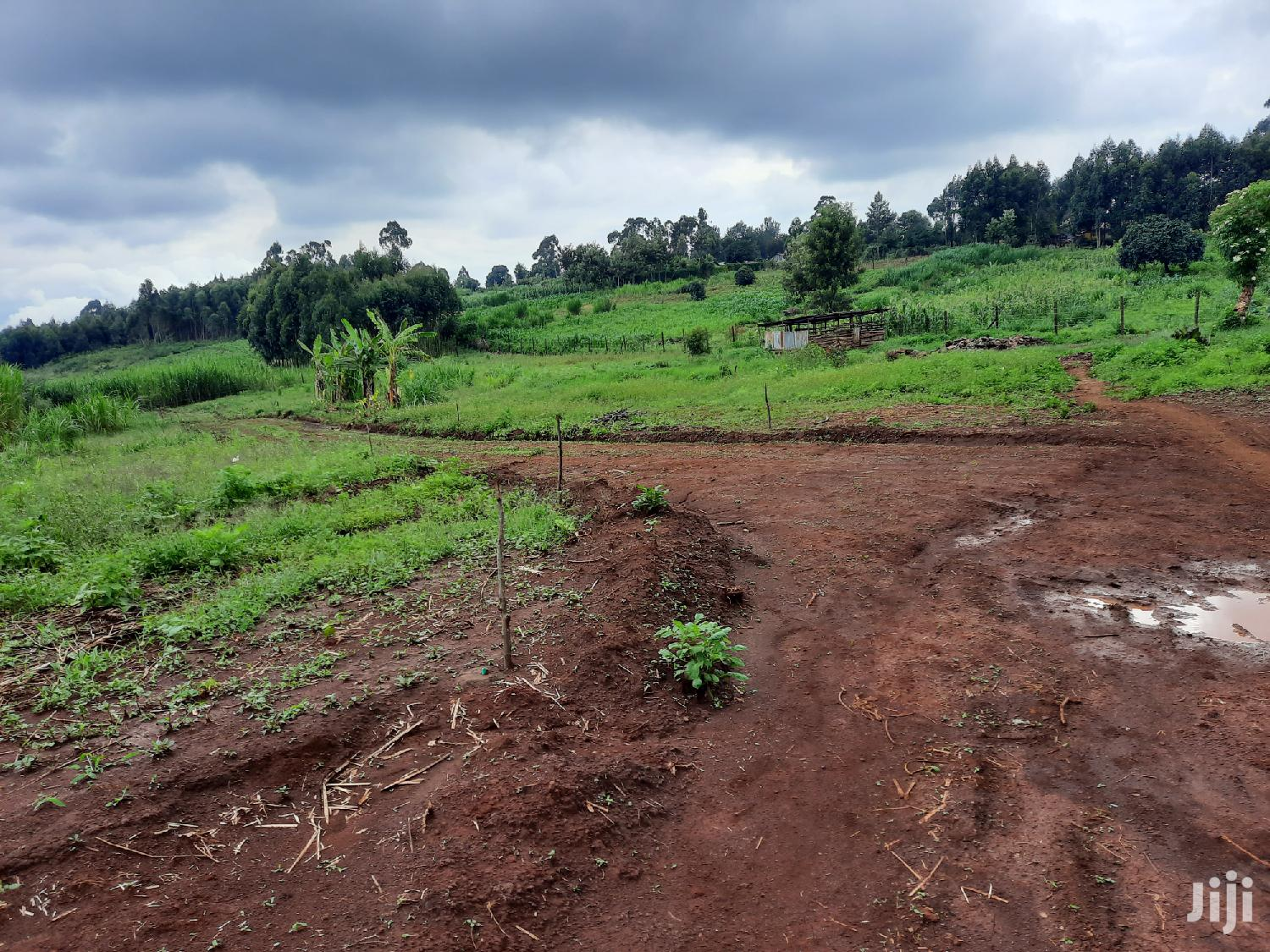 50×100 Plots Kikuyu Muguga Kiambu County | Land & Plots For Sale for sale in Muguga, Kiambu, Kenya