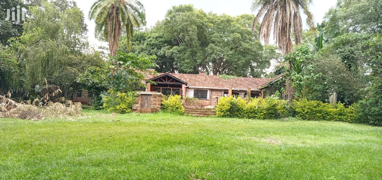 Archive: Lavington Mature 1.5acre Of Land Ideal For Development Of Townhouses
