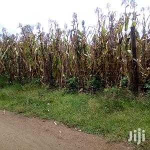 One Eighth Of An Acre   Land & Plots For Sale for sale in Gilgil, Elementaita