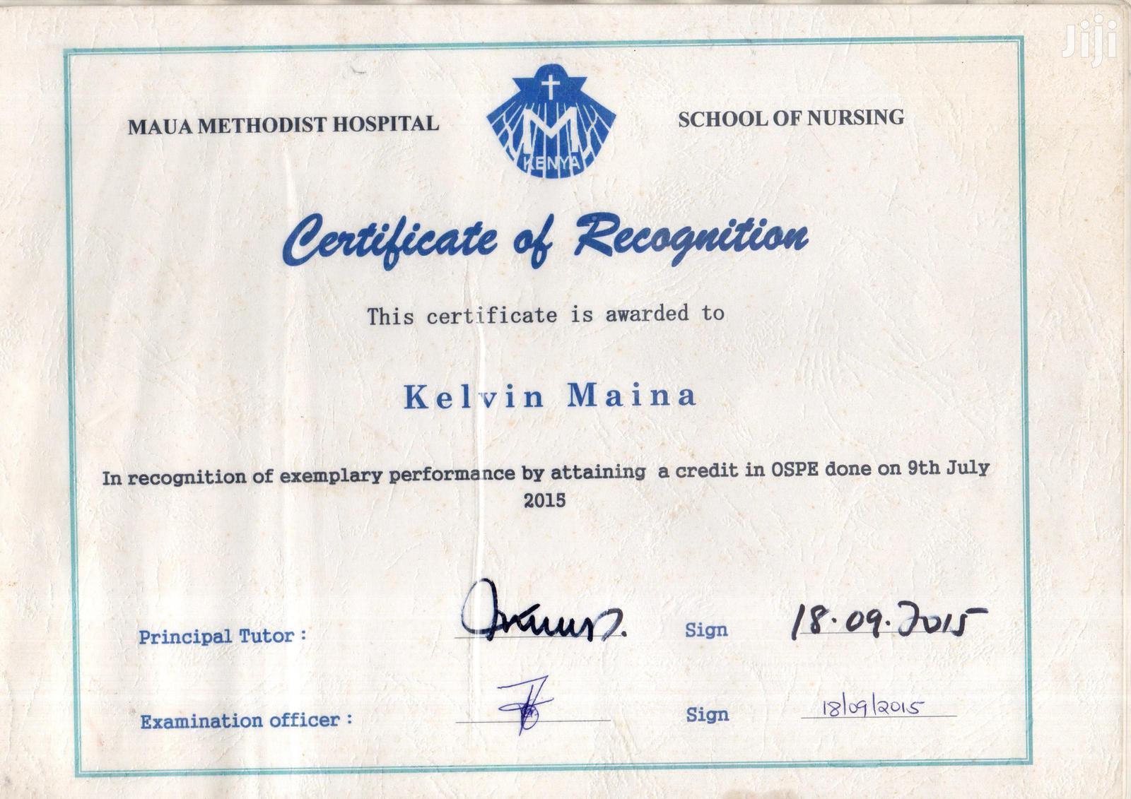 Community Health Nurse | Healthcare & Nursing CVs for sale in Weru, Nyandarua, Kenya