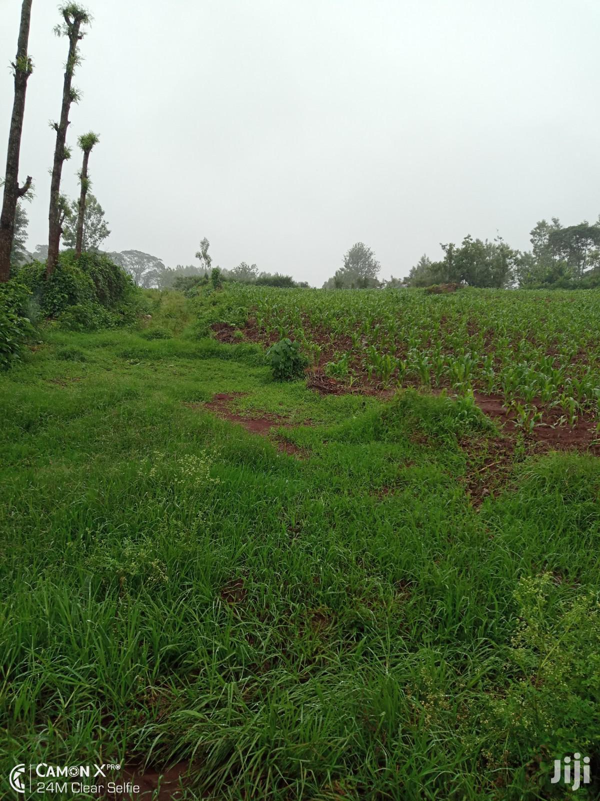 1/8 Acre Land For Sale Kiambu   Land & Plots For Sale for sale in Ting'Ang'A, Kiambu, Kenya