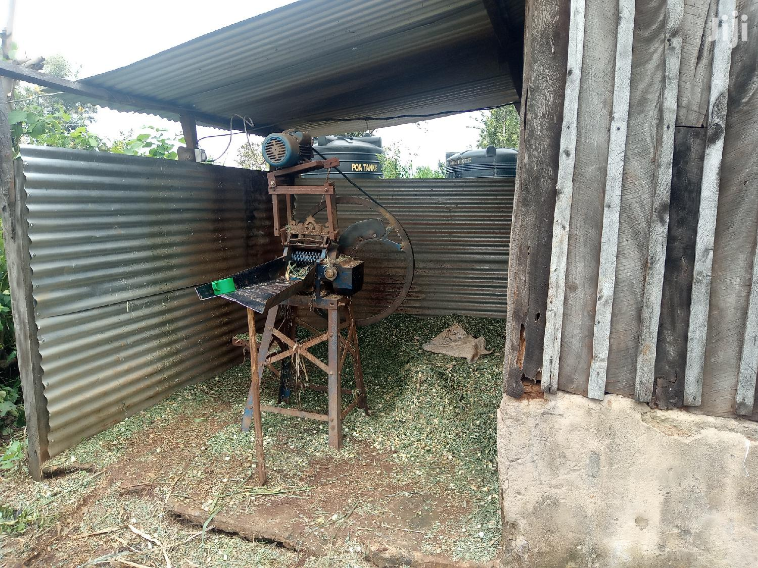 Archive: Dairy Farm For Sale