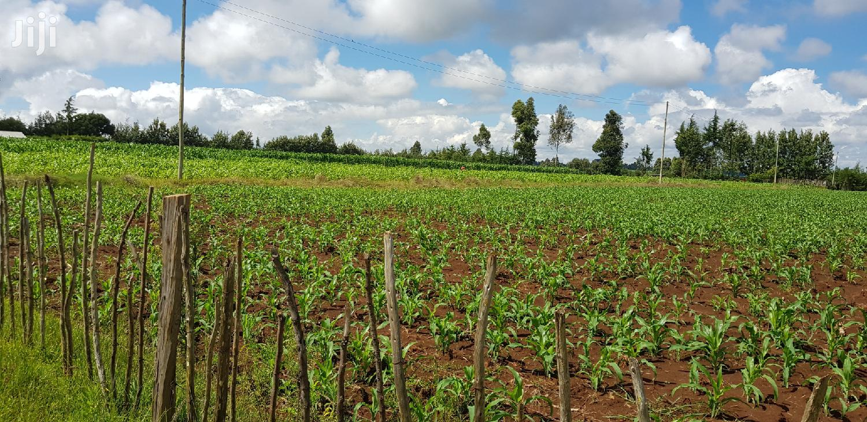 Prime 8 Acres Land for Sale in Koshin Near Kapjagir Eldoret   Land & Plots For Sale for sale in Eldoret CBD, Uasin Gishu, Kenya