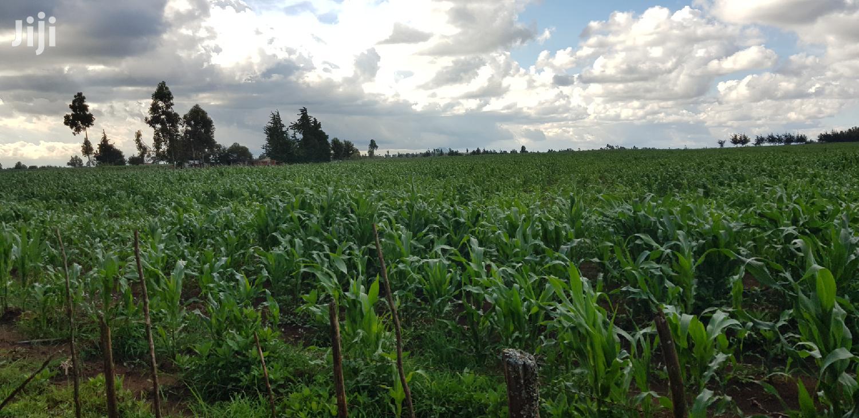 Prime 8 Acres Land for Sale in Koshin Near Kapjagir Eldoret