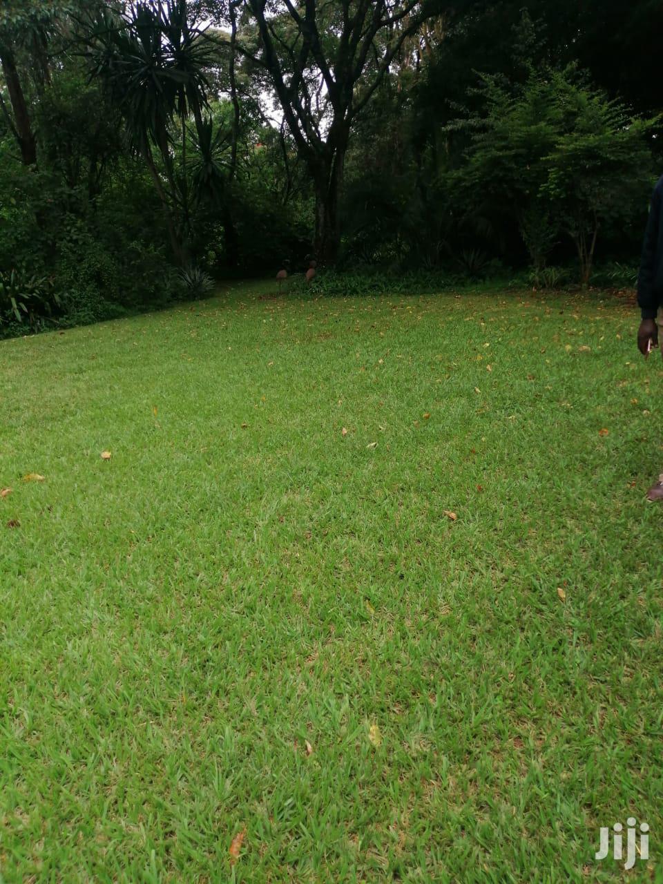 Karen Mukoma Rd 1 Acre Ideal for Residential Home Flat Land