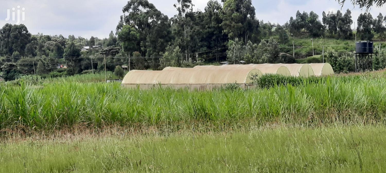 1/2 an Acre Kikuyu Lusigetti Kiambu County | Land & Plots For Sale for sale in Kikuyu, Kiambu, Kenya