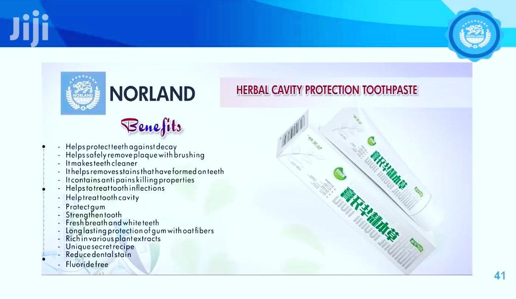 Norland Herbal Toothpaste - Mint (Treatment Of Mouth Odour)