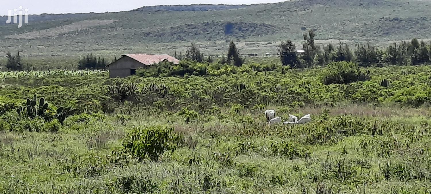 50x100 Plots Gilgil Nakuru County | Land & Plots For Sale for sale in Gilgil, Nakuru, Kenya