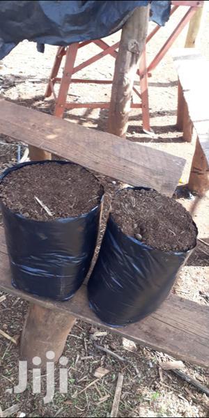 Kitchen Garden Planting Bags   Garden for sale in Nairobi, Nairobi Central