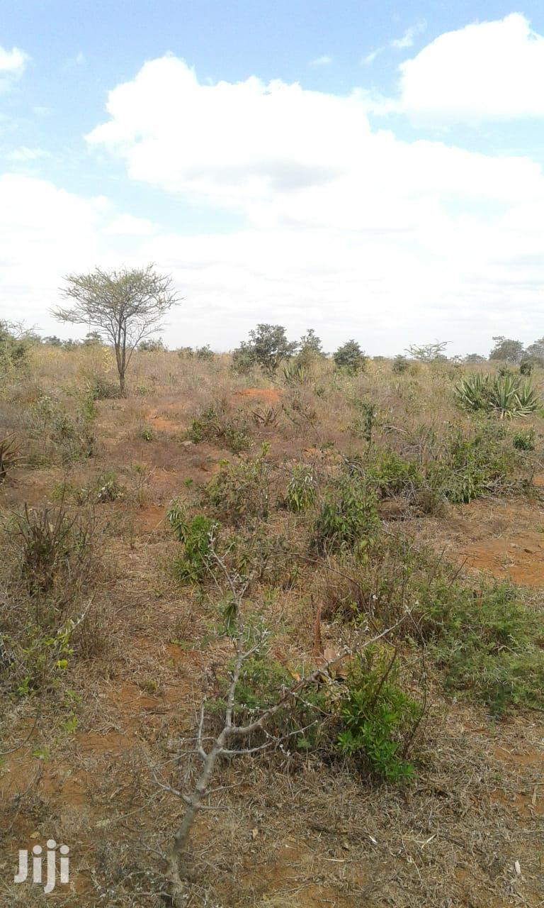 Archive: Kithimani Plots