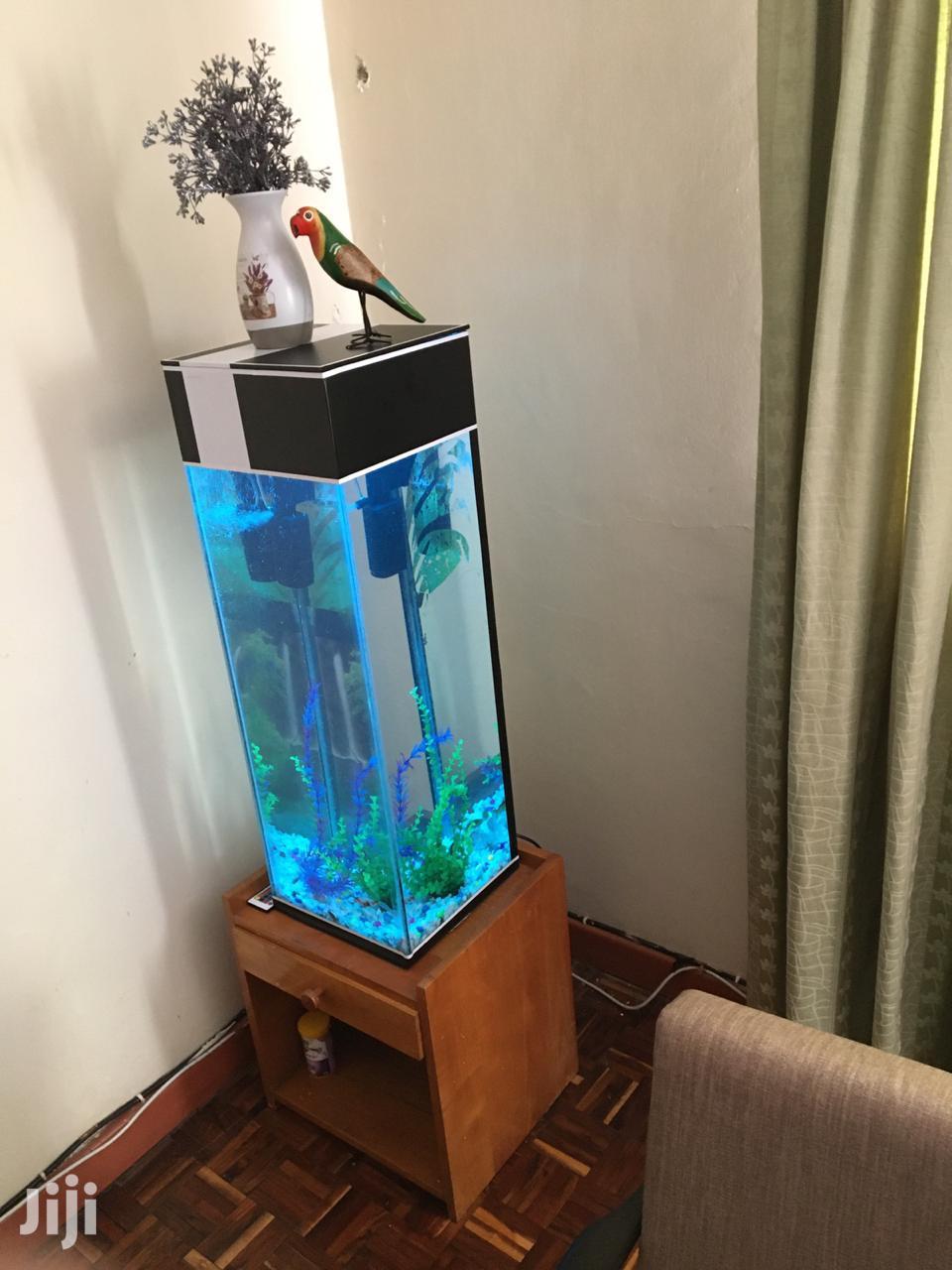 Archive: Tower Aquarium