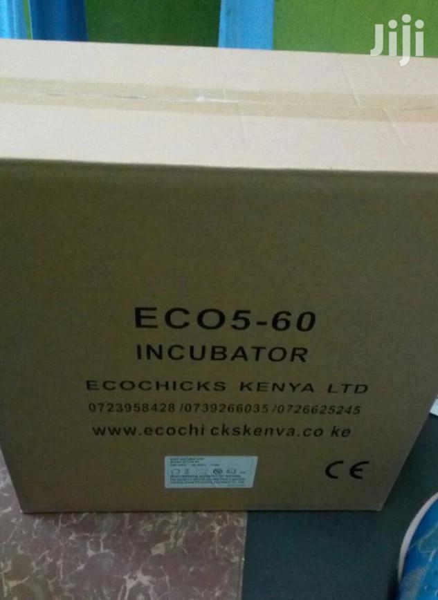 Portable 60 Eggs Incubator