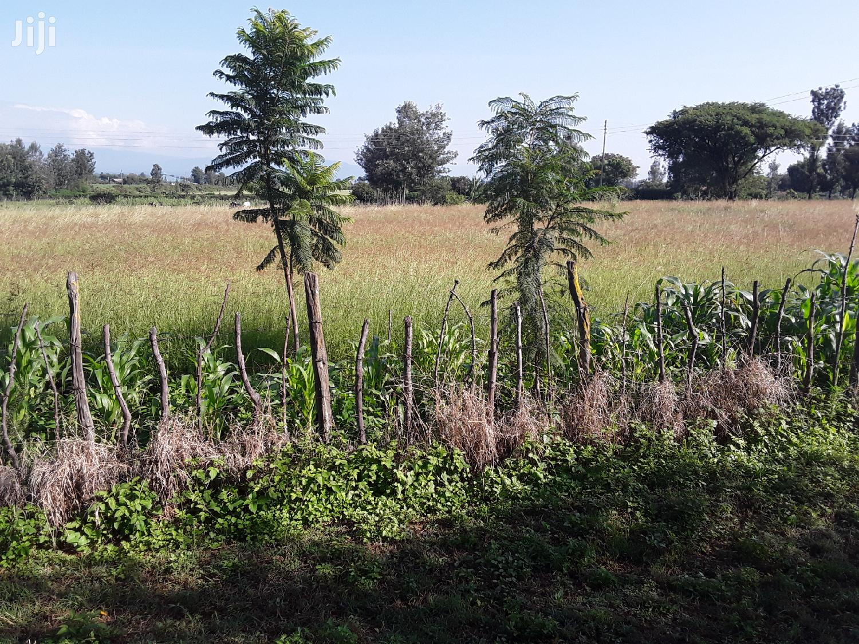 Fresh Hay In Kabarak Farm Area | Feeds, Supplements & Seeds for sale in Menengai West, Nakuru, Kenya