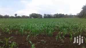 10 Acres Of Land For Sale   Land & Plots For Sale for sale in Nakuru, Njoro
