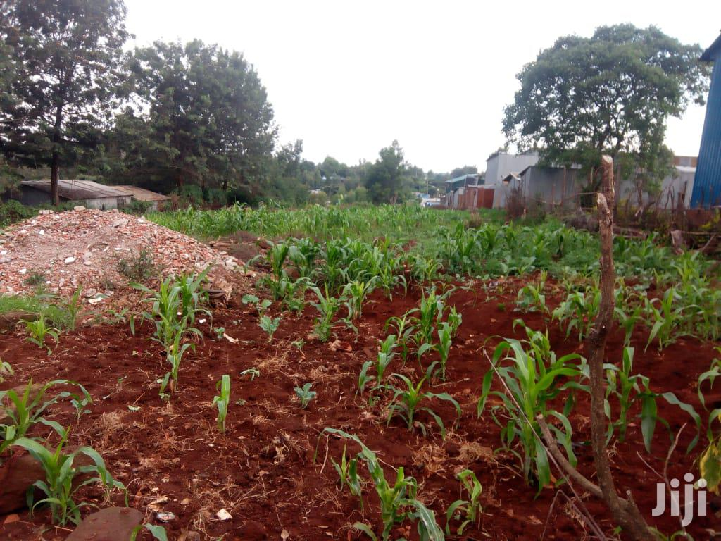 Archive: 1/4 Acre Land For Lease In Dagoretti