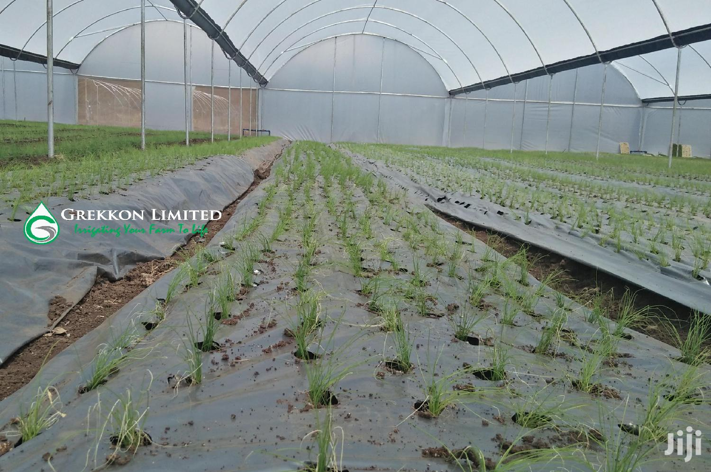 Vegetable Plastic Mulch | GREKKON LIMITED