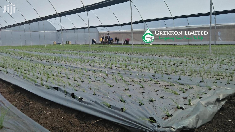 Vegetable Plastic Mulch | GREKKON LIMITED | Farm Machinery & Equipment for sale in Racecourse, Kesses, Kenya