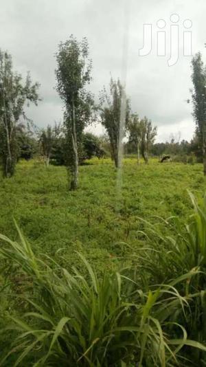 40 Acres for Sale in Kinangop Murungaru.   Land & Plots For Sale for sale in Nyandarua, Murungaru