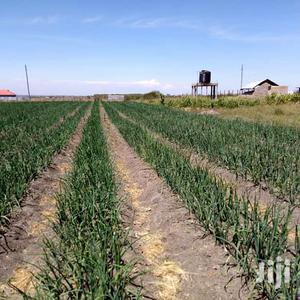 Drip Irrigation Systems For Sale 1 Acre | Farm Machinery & Equipment for sale in Mombasa, Tudor