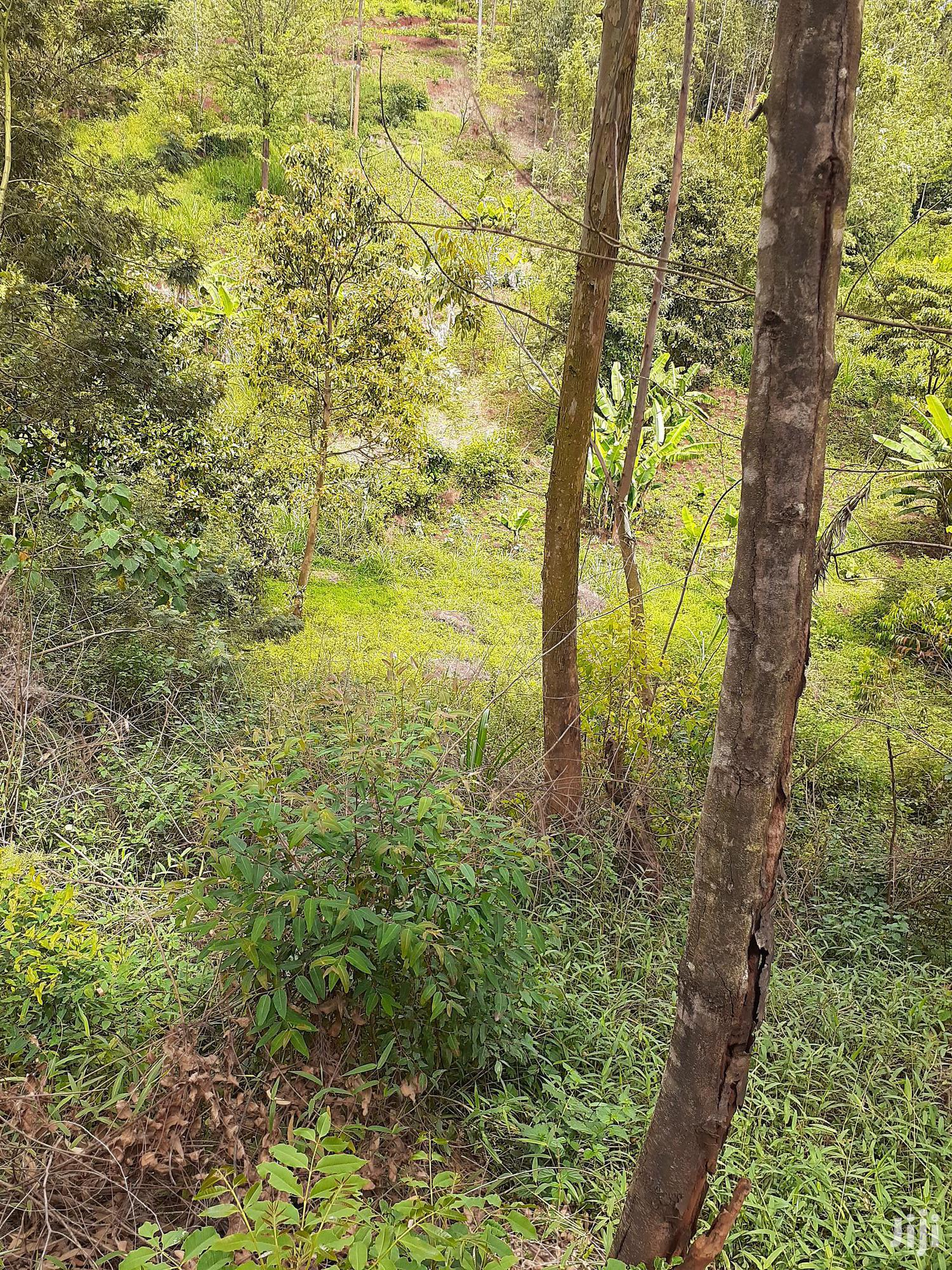 Ndenderu 1/8 Acre For Sale