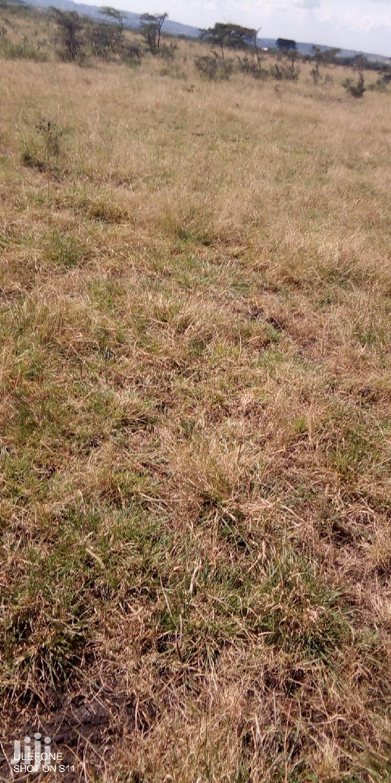 15,000 Acres For Leasing In Narok
